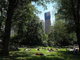 sitting on picnic tables or park benches in green open spaces can