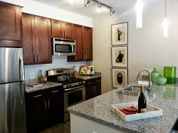 College Apartment Decorating Kitchen Decor Themes Rental Kitchen