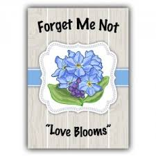 forget me not seed packets forget me not seed packets thereviewsquad