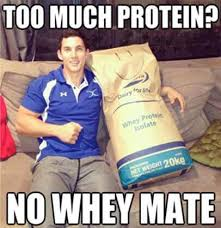 Protein Memes - too much protein no whey mate memes bmi calculator