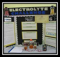 Challenge Science 2013 Science Fair Project