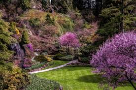 landscapes flowers stairs shrubs gardens trees walkway steps lawn
