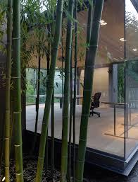 krã uter balkon krã uter pflanzen ohne balkon räume hause dekoration ideen