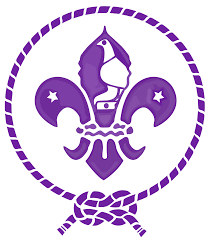 the scout association of zimbabwe wikipedia