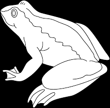 frog coloring page free clip art