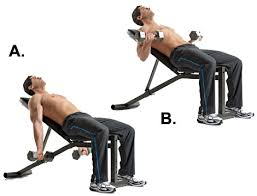 Incline Dumbell Bench Press Gym Inspiration Com Incline Dumbbell Curls