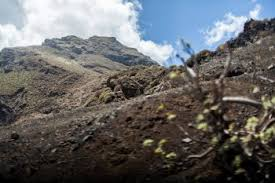 Rugged Landscape Tenerife Canary Islands Of Spain Rough Trails And Adventure