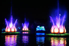 i run for wine rivers of light show at disney animal kingdom