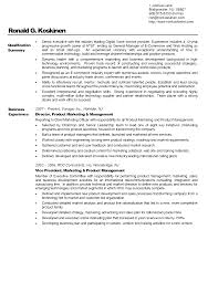 Resume Samples Vice President Marketing by Professional Business Resume Free Resume Example And Writing