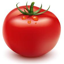 tutorial illustrator gradient how to illustrate a tomato in adobe illustrator illustrator