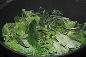 cuisiner feuilles de radis crème de fanes de radis oeuf mollet julien diaz
