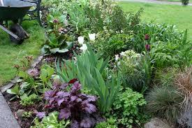 vegetable garden plants boundless table ideas