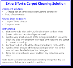 diy upholstery cleaning solution cincinnati s heavy rains bring carpet cleaning issues