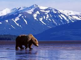 Alaska landscapes images 125 best alaska images alaska usa landscapes and jpg