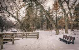 Park Bench Scene Winter Scene With Park Bench And Snow Stock Photo Image 42023223