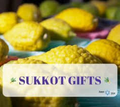 sukkah kits sale cheap easy sukkah kits for sukkot 2018 amen v amen