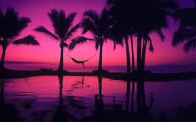purple pictures purple sunset wallpaper