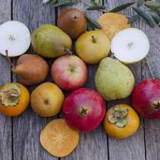 fresh fruit delivery monthly okanagan fruit delivery organic products fruit