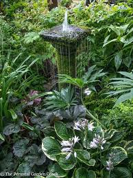 Shady Backyard Ideas Fountain In Shady Garden Inspirational Idea Water Fountain Garden