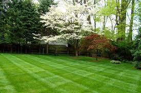 Cutting Edge Lawn And Landscaping by Lawncare Cutting Edge Lawns U0026 Landscapes