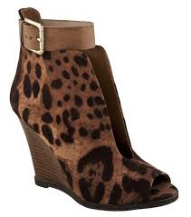 amazon com zigi soho s the shoes at magazine s
