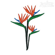 bird of paradise flower embroidery design