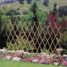 What To Use For Climbing Plants - trellises you u0027ll love wayfair