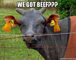 We Got This Meme - we got beef hairless cow make a meme