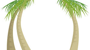 palm tree svg organic themes