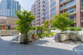 1 Bedroom Apartments Seattle by 1 Bedroom Apartments For Rent In Seattle Wa 782 Rentals U2013 Rentcafé