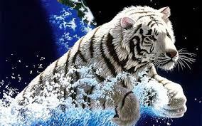3d tiger android apps on google play