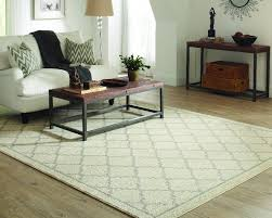 pet proofing area rugs the home depot community