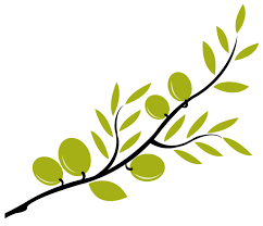green olive tree branch clipart cliparts and others art inspiration