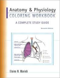 Study Anatomy And Physiology Online Anatomy And Physiology Coloring Workbook A Complete Study Guide
