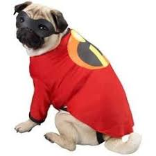 Disney Halloween Costumes Dogs Bob Marley Dog Halloween Costumes 20 Funny Homemade Dog