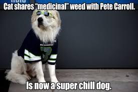Seahawks Super Bowl Meme - footballnation article