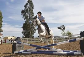 common types of show jumps