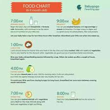 table food for 9 month old about eating time table of my 7 month old