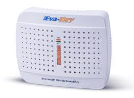 Best Basement Dehumidifier Reviews by Amazon Com New And Improved Eva Dry E 333 Renewable Mini