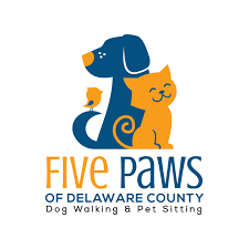 dog daycare floor plans welcome to five paws pet sitting and dog