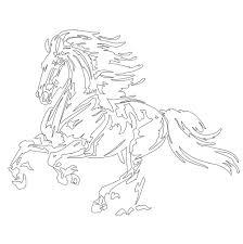 amazon com vive le color horses coloring book color in