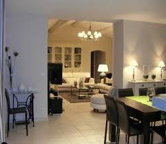 aménagement salon salle à manger cuisine idee deco cuisine salle collection et idée aménagement salon salle à
