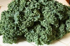 kale salad for thanksgiving without a hitch u2013 garlicky kale salad penchant for produce