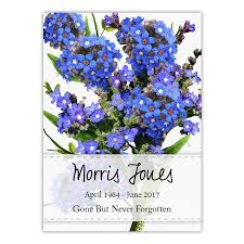 forget me not seed packets custom seed packets seed favors seed needs llc