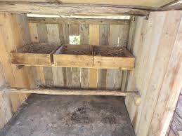 Come Costruire Un Pollaio In Legno by Pavimento Per Galline Azienda Agricola Il Palle Commercio Animali