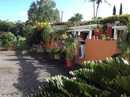 mediterranean style ohana rental garden bungalow ocean view