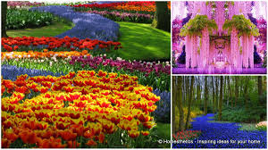 Photo Flower Garden by 13 Of The Most Beautifully Designed Flower Gardens In The World