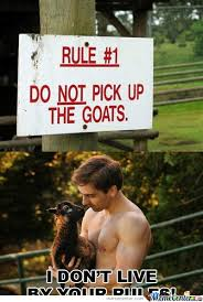 Meme Center Sign Up - do not pick up the goats by risefire meme center