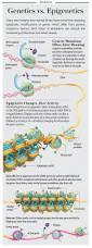 324 best genetics images on pinterest life science science