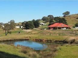 hills self watering garden wall in south australia gumtree